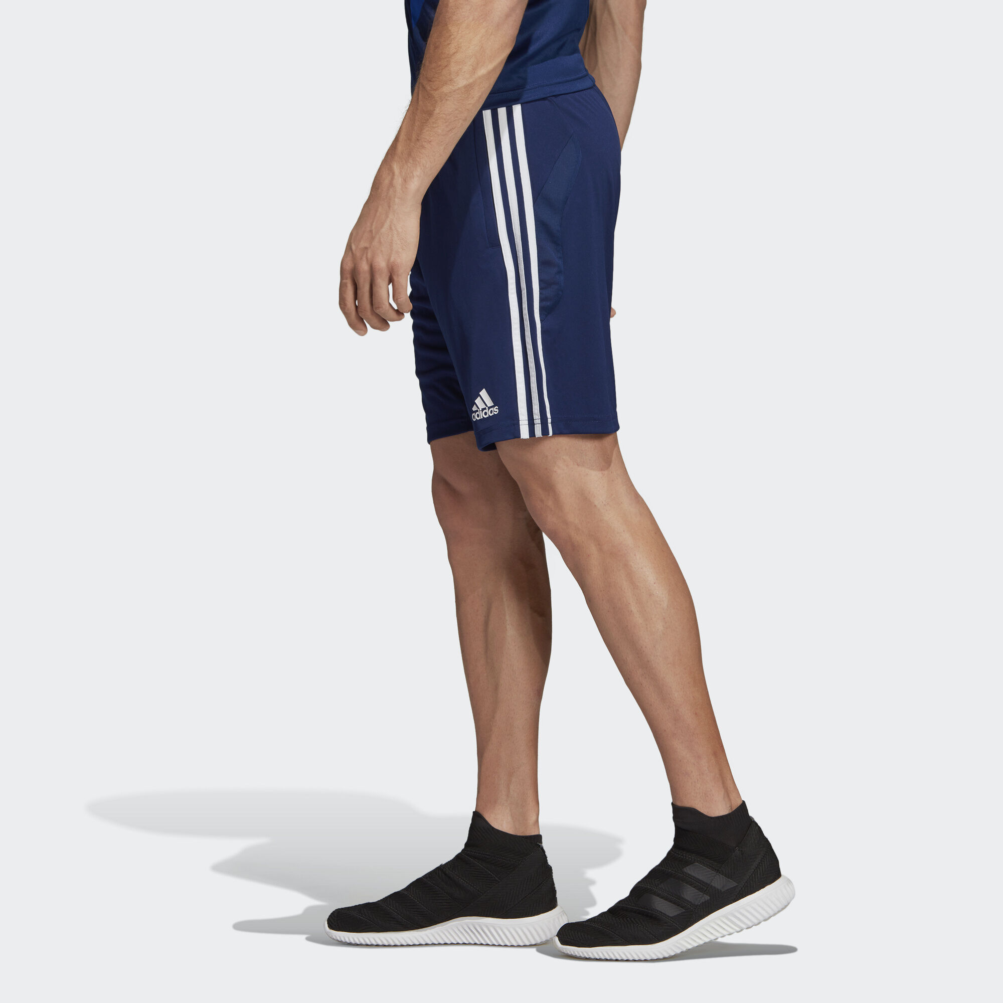 Шорты Tiro 19 adidas Performance